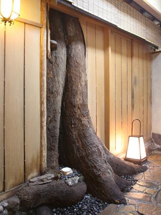 樹齢約200年の椋の樹